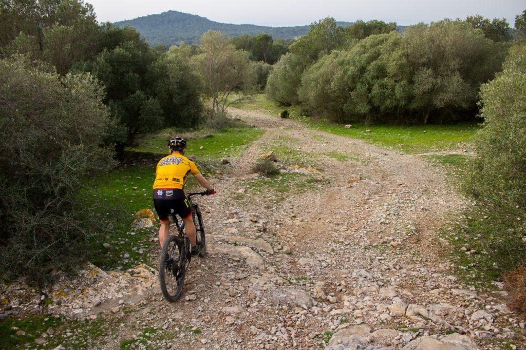 La ruta dels 3 massissos (2/3 dies) Gavarres, Ardenya i Montgrí