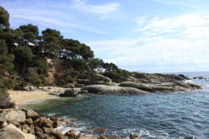 cala de sorra amb el mar a la dreta i amb roques planes